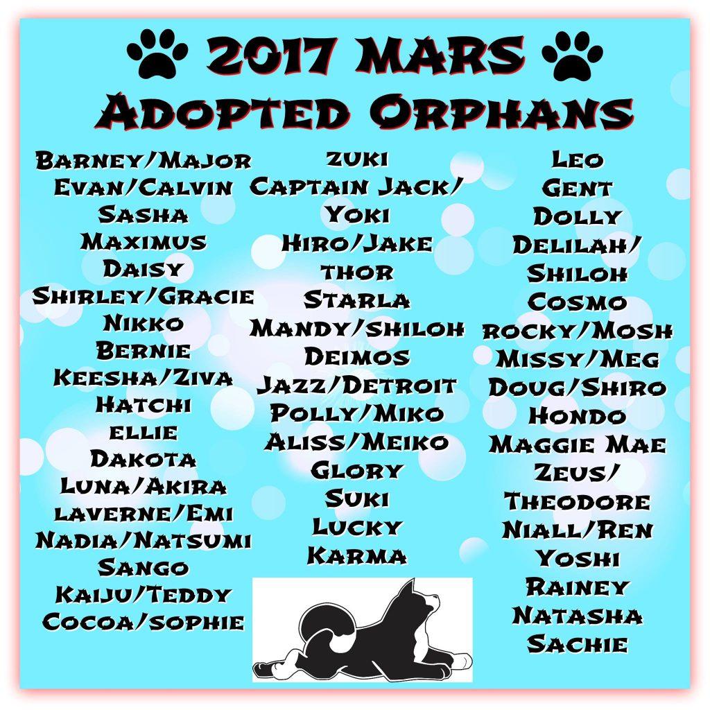 2017 adoptions